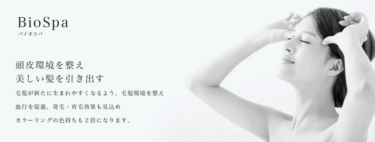 H3+ Luce (エイチスリープラス ルーチェ)